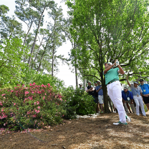 Hideki Matsuyama of Japan plays from the pine straw at hole No. 3 during the first round of the Masters. (Augusta National)